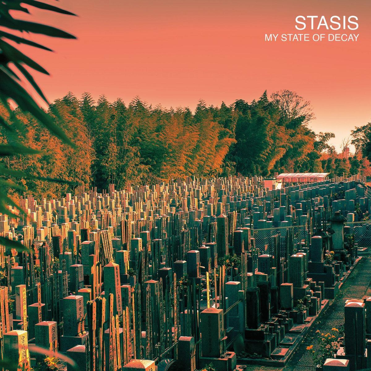 Image result for stasis my state of decay
