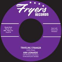 Travelling Stanger cover art