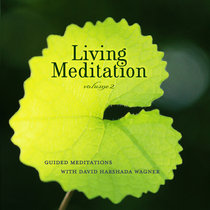 Living Meditation, Vol. 2: Guided Meditations with David Harshada Wagner cover art
