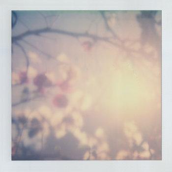 Radiant Emptiness by Sunyataji