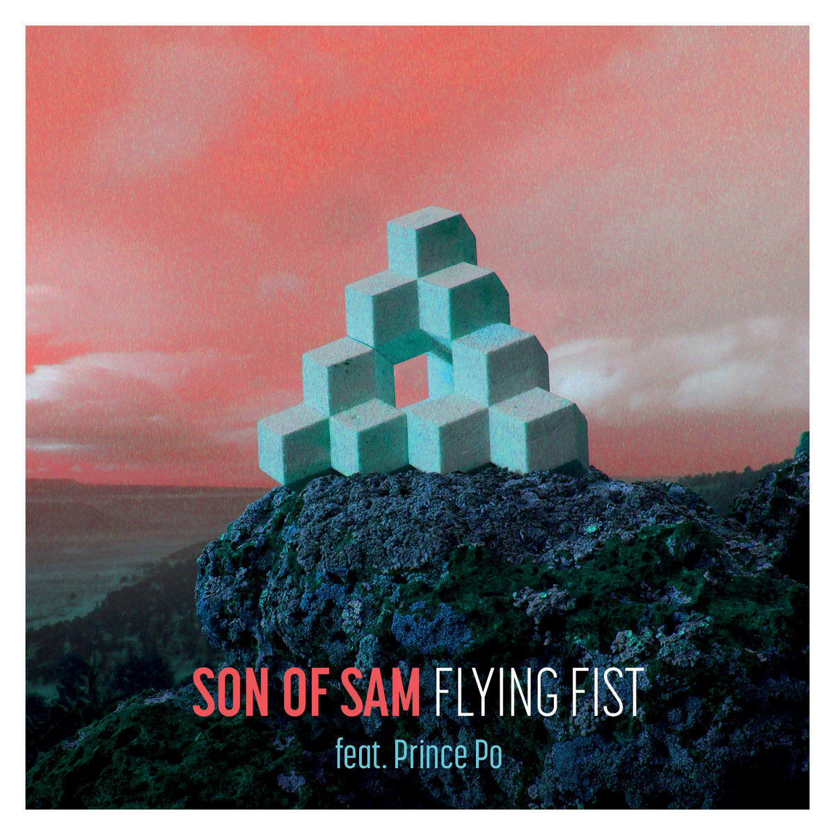 Music son of sam flying fist biocorpaavc Images