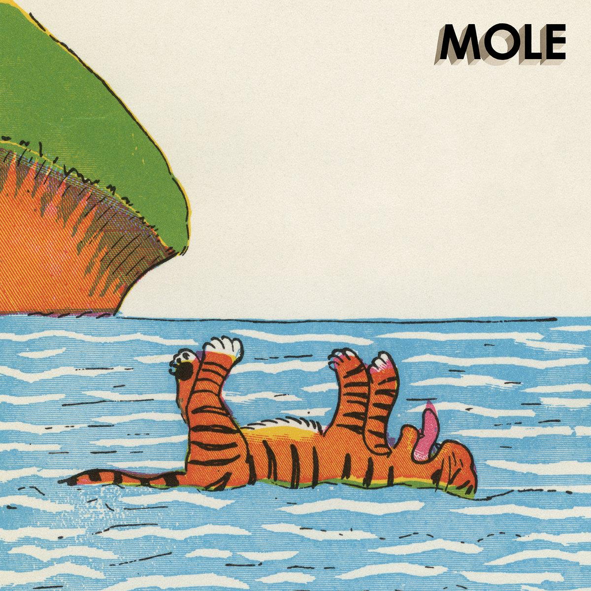 Danger Island | MOLE