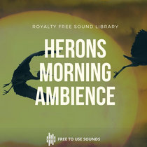 Morning Soundscape Village Petulu, Bali, Herons, Rooster & Temple Drums cover art