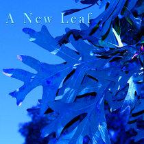 A New Leaf cover art