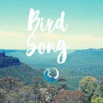 Bird Song cover art