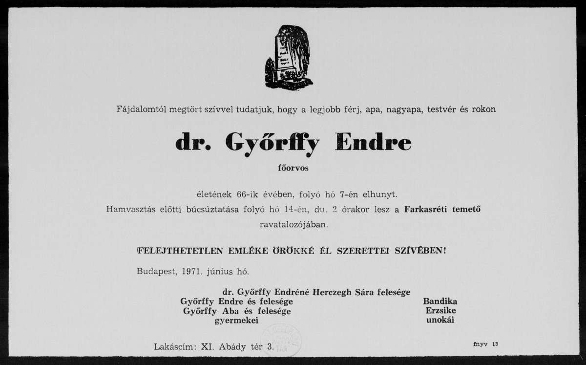 english for doctors gyorffy pdf free