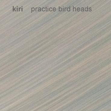 practice bird heads main photo