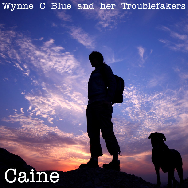 Caine by Wynne C Blue