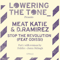 Meat Katie & D.Ramirez - Stop The Revolution - Part 1 (Pay What You Want!) with Remix's by Dubfire, Jamie Mchugh cover art
