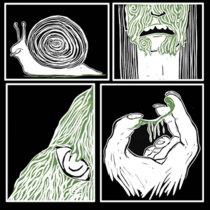 Snails cover art