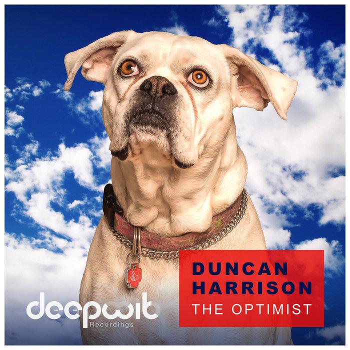 The Optimist, by Duncan Harrison