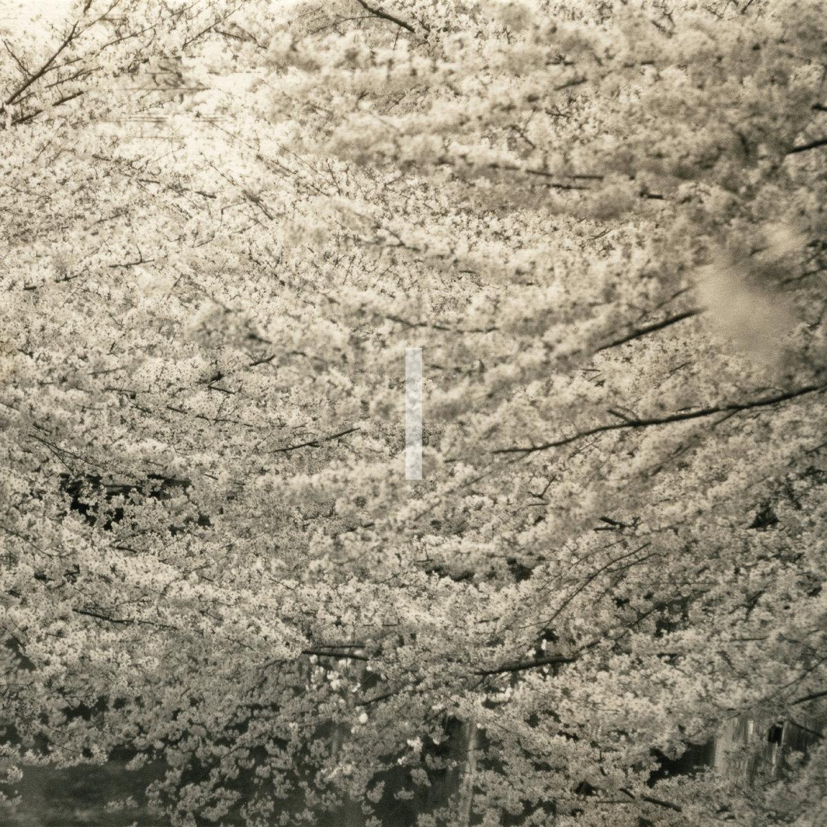 Japanische Art der menschlichen Wiederbelebung mit der süßen Asiatin Natsuki Hasegawa