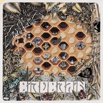 BIRDBRAIN by Zuffalo