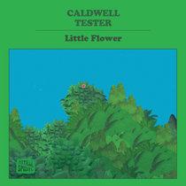 Little Flower cover art
