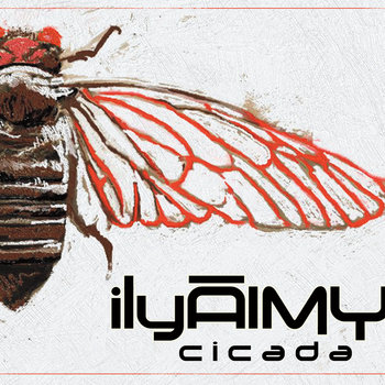 cicada by ilyAIMY