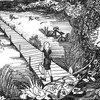 Swampblossom Cover Art