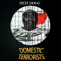Domestic Terrorists cover art