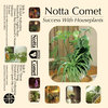 Success With Houseplants Cover Art