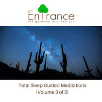 Deep Sleep Guided Hypnotic Meditations #3 cover art