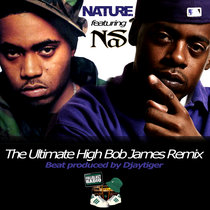 Nas and Nature - The Ultimate High Bob James Remix cover art
