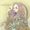 Wildlights Cover Art