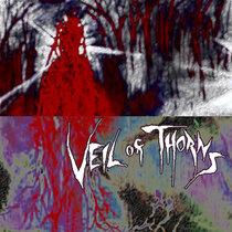 Veil of Thorns cover art