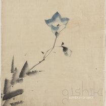 Gishiki cover art