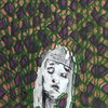 Reptillian Dubstep Cover Art