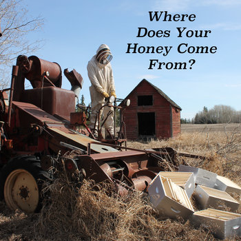 Where Does Your Honey Come From? by The Honey Cowboy