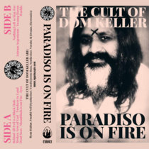 Paradiso Is On Fire cover art