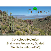 Conscious Evolution - Brainwave Frequency Guided Meditations (Mixed VO) cover art