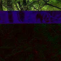 DTCB:11/15 cover art