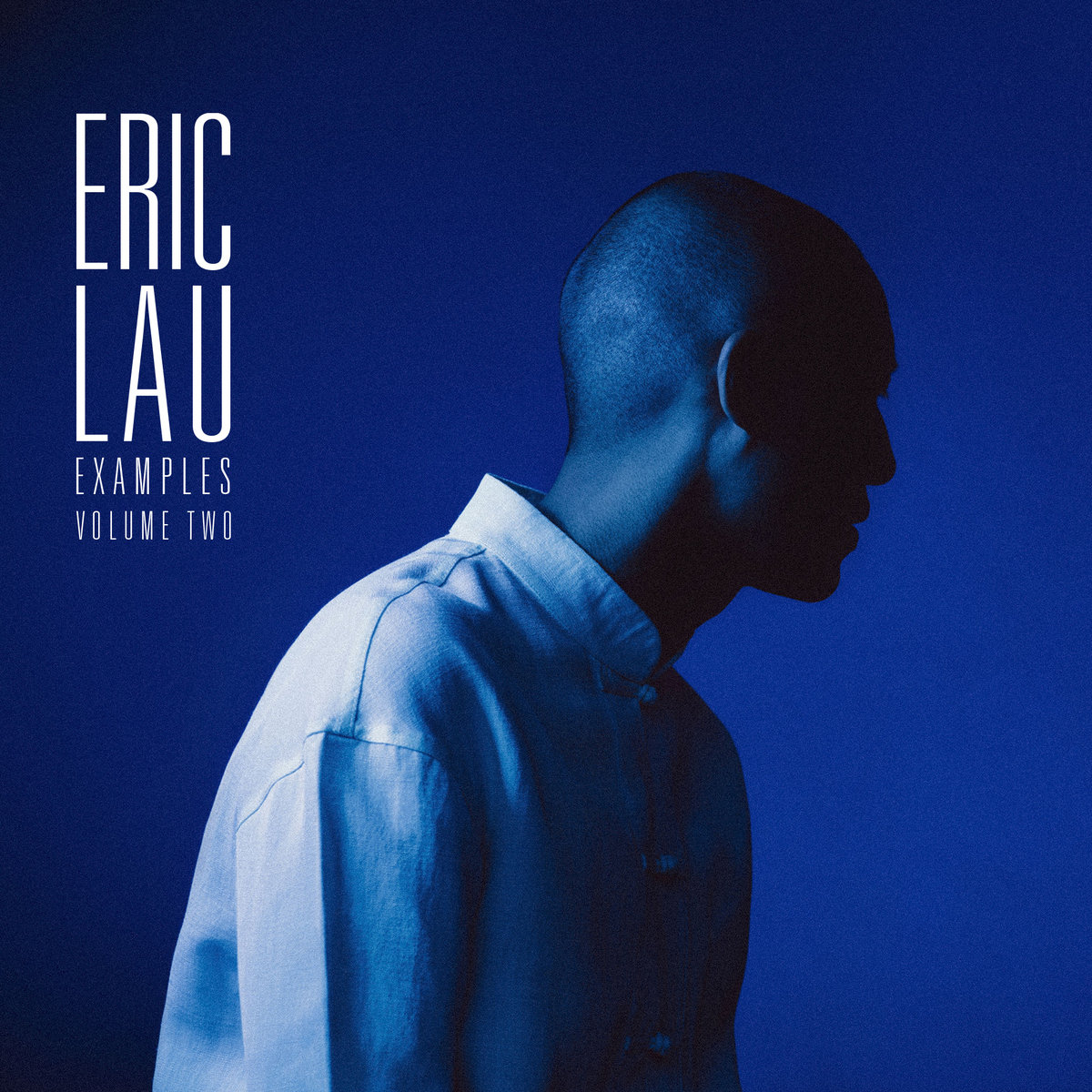 Examples Volume Two | Eric Lau