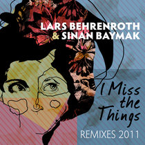 I Miss The Things - Remixes 2011 cover art