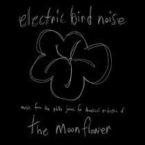 The Moonflower cover art
