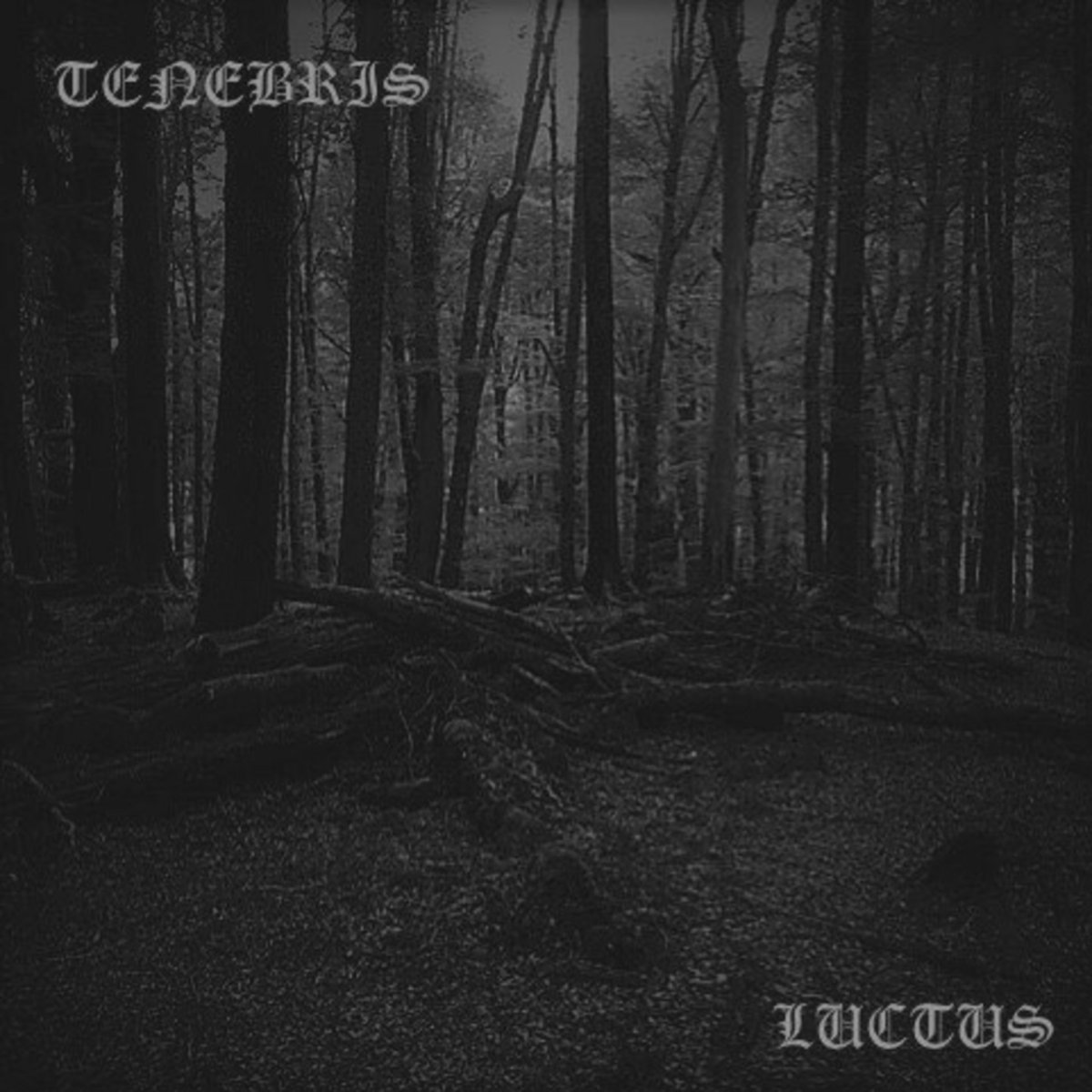 https://tenebris-sonos.bandcamp.com/album/luctus