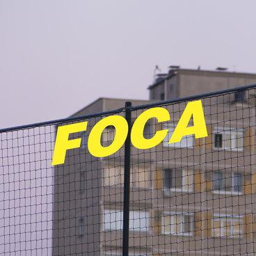 Foca main photo