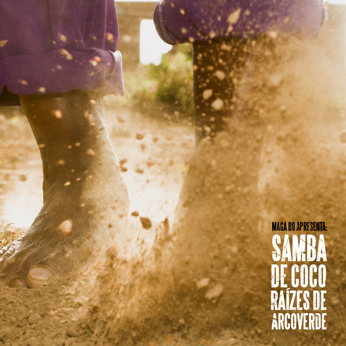 Raizes do samba | leci brandão – download and listen to the album.