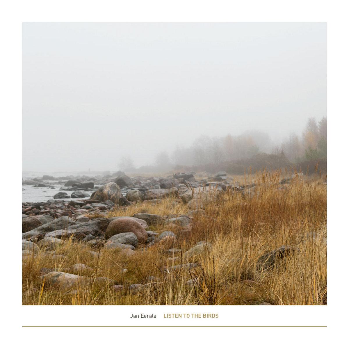 The Konkelo Story Anatomy Of A Fallen Tree Terranean Recordings