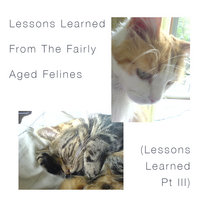 Lessons Learned From The Fairly Aged Felines (Lessons Learned Pt III) 2021 cover art