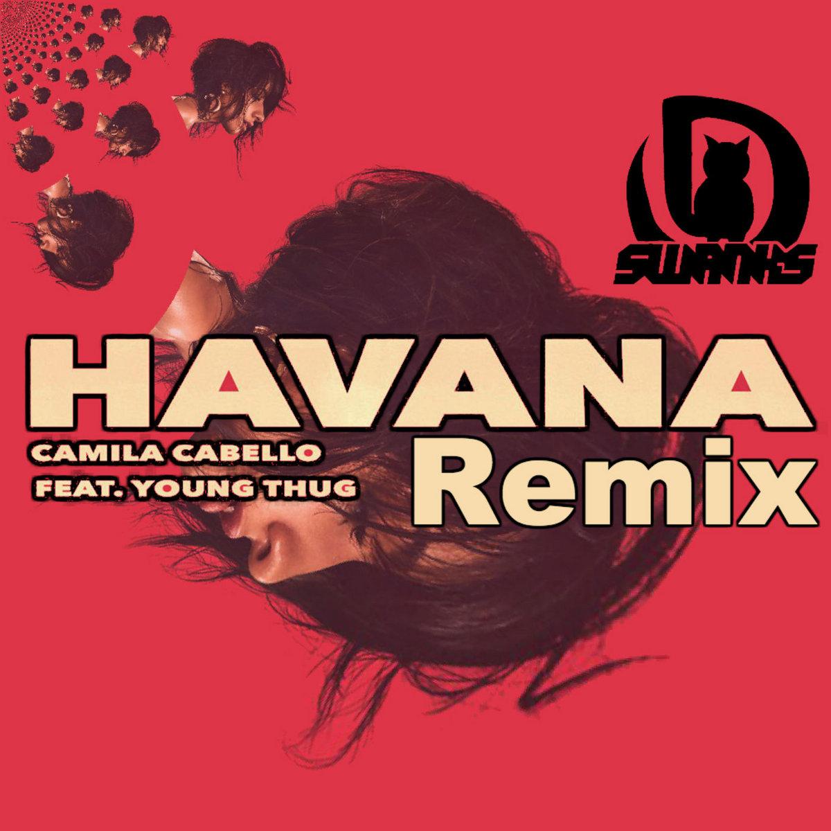 Havana Camila Cabello Ft Youg Thug Danitty Swanks Remix Dankitty Swanks