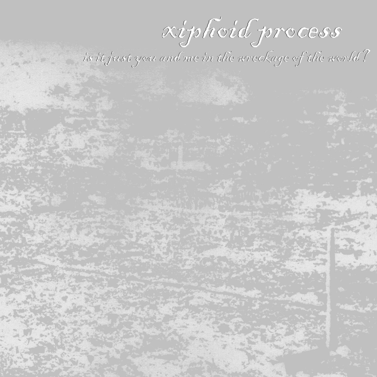 impermanence   xiphoid process