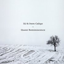 Queer Reminiscence cover art
