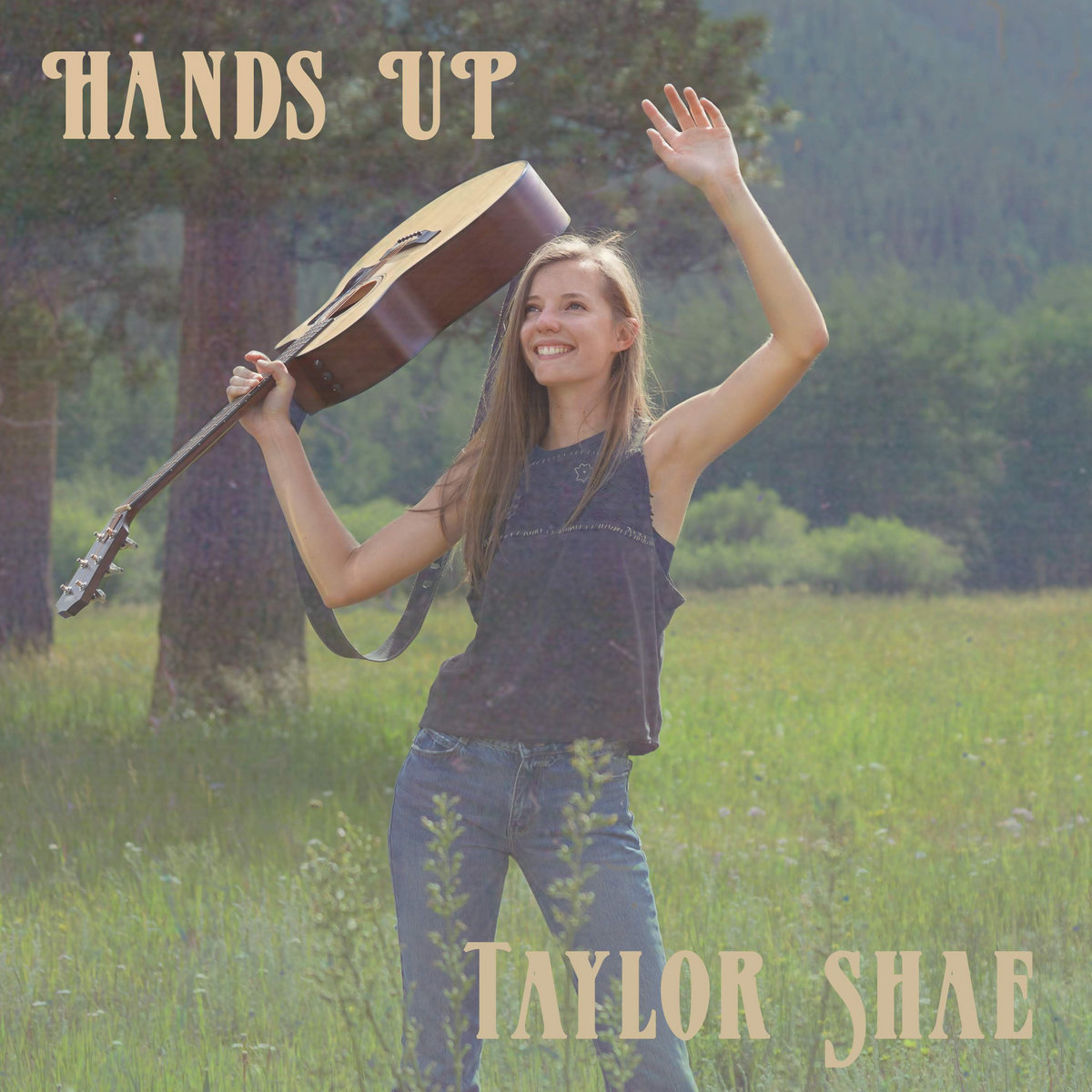 Hands Up by Taylor Shae