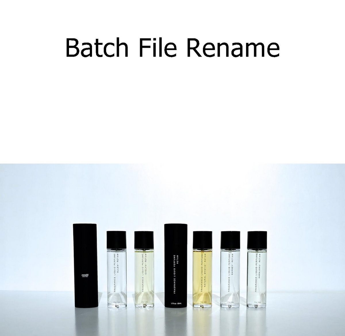 v 2 4 6 Batch File Rename where download stable version