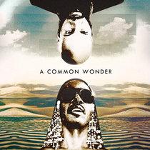 A Common Wonder [Clean Edits] cover art