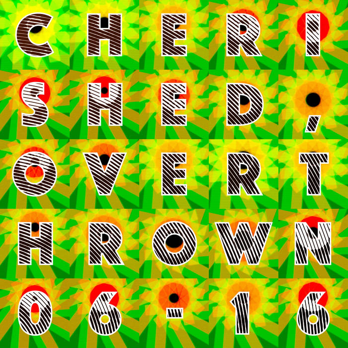 Cherished, Overthrown [06-16] cover art