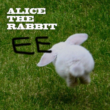 Alice The Rabbit main photo