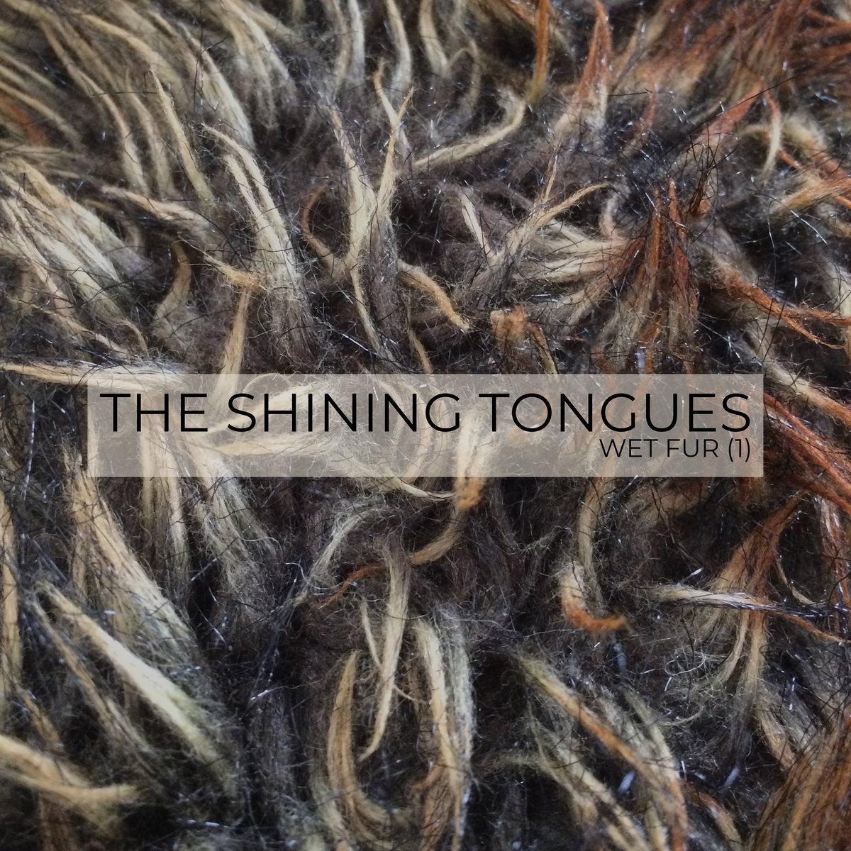 Wet Fur (1) by The Shining Tongues