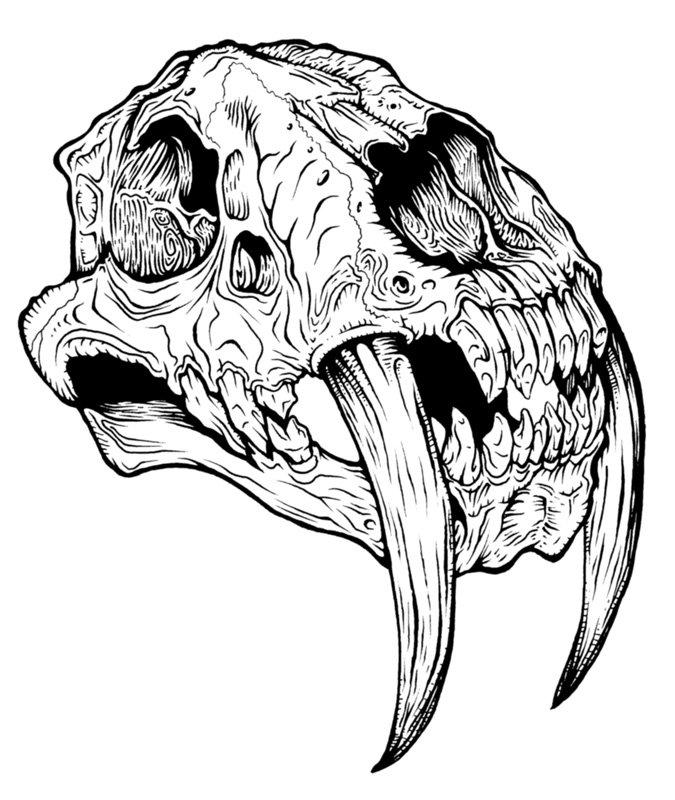 Sabertooth Skull Tattoos